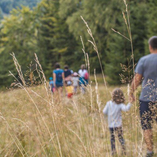 Tabara copii Pastel Chalet, Un loc de poveste, Tabara august 2017 (9)