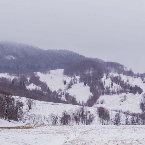 Tabara copii Timeless Story, la Pastel Chalet, judetul Brasov, tabara de iarna pentru copii (38)