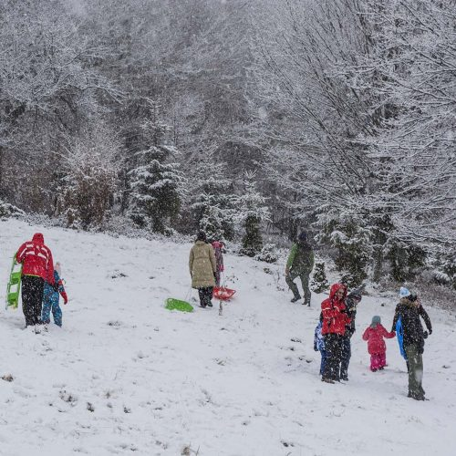 Tabara copii Timeless Story, la Pastel Chalet, judetul Brasov, tabara de iarna pentru copii (8)